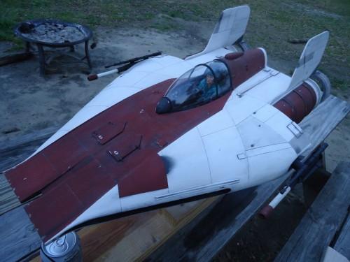 A wing fighter backyard shots 023